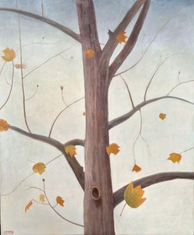 John Beerman Chatwood Tulip Poplar with Falling Leaves, 2016