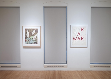 Polke | Nauman: Drawings from the Froehlich Collection