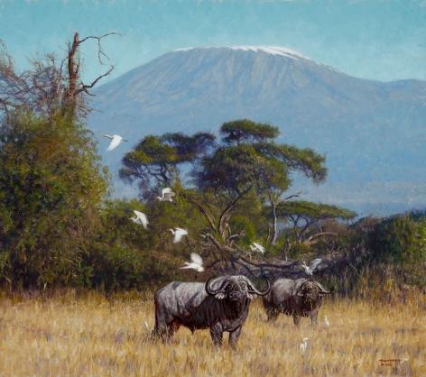 Buffalo Near Kilimanjaro, 2018