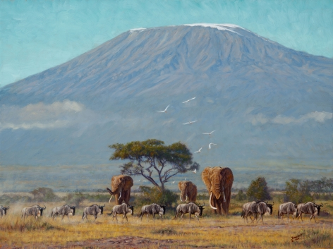 Near the Foothills of Kilimanjaro, 2019