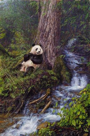 Panda Shangri-La, 2013