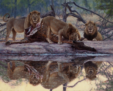 Reflections of a Successful Hunt, 2017
