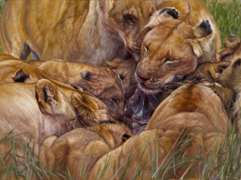 Spoils of the Hunt, 2012