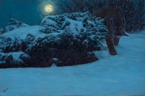 Midnight Stalker, 2013