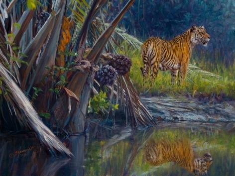 Sumatran, 2015