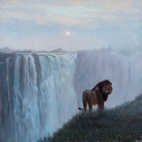Lion at the Falls, 2017