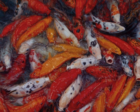 The Colors of Koi, 2019