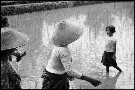 """Untitled, Java, Indonesia 1995. Archival Pigment. Edition of 25. 16"""" x 20"""""""
