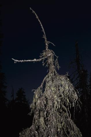 Esko Männikkö