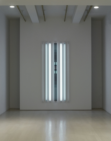 Installation view from the exhibition, Robert Irwin: Dotting the i's and Crossing the t's, Pace Gallery, 32 East 57th Street (Part I) and 510 West 25th Street (Part II), New York, September 6–October 20, 2012. At center: Garçon, 2012.