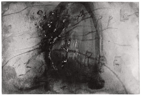 David Lynch, Apple Tree