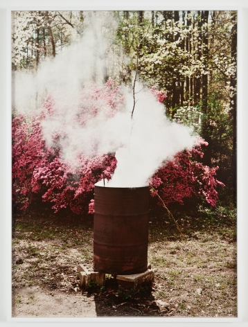 Liza Ryan Bloom #1, 2012 Pigment print 56 ¾ x 44 ¾ inches Edition of 5