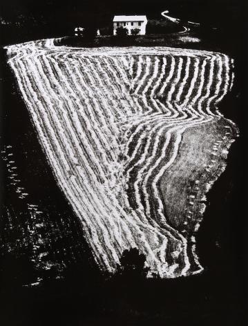 Mario Giacomeli, Presa di coscienza sulla natura, 1954-2000