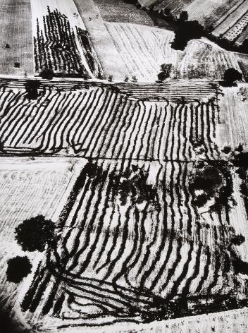 Giacomelli, Presa di coscienza sulla natura, 1954-2000