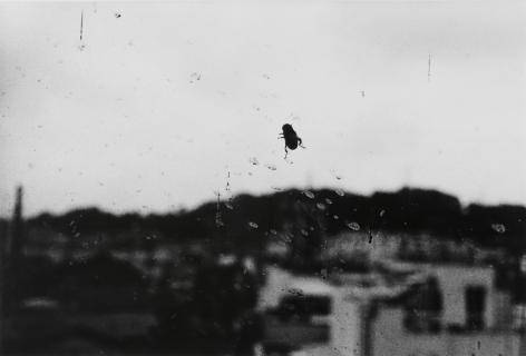 Moriyama, Fly, Suwa City, Nagano, 1990
