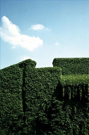 Ghirri, Garden