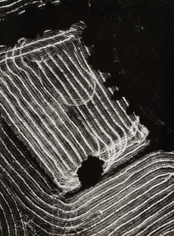 Mario Giacomelli, Presa di coscienza sulla natura, 1980