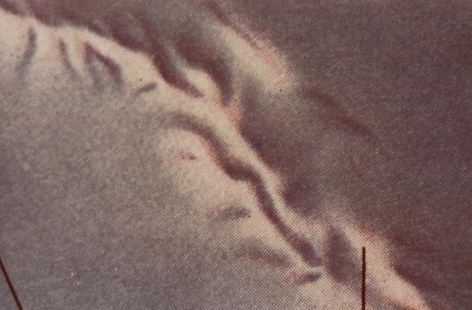 Ghirri, Atlante (n°16), 1973