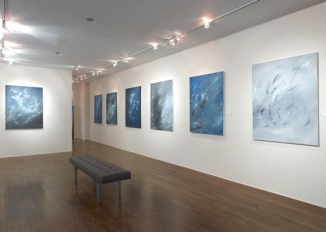 Lisa Bradley: The Fullness of Being - Installation view