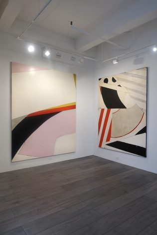 Installation view: Knox Martin: Radical Structures