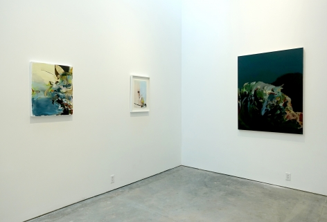 Installation view: Hollis Heichemer: Happenstance