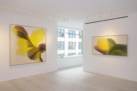 Irene Monat Stern - Installation view