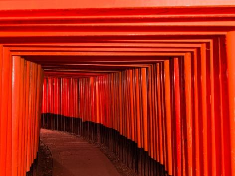 André Wagner (b. 1980) Fushimi Inari-Taisha 5, 2016