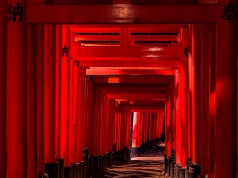 André Wagner (b. 1980) Fushimi Inari-Taisha 9, 2016