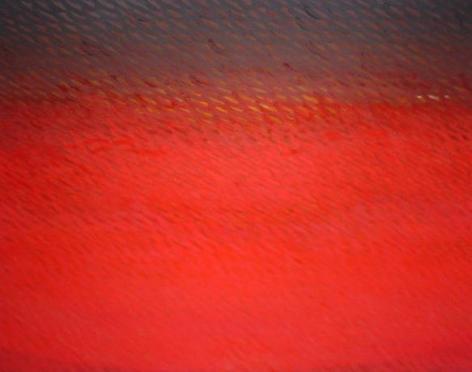 "Joan Vennum, West, 2005, Oil on canvas, 22 x 25"""