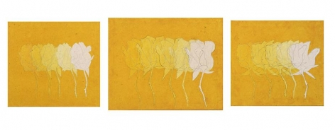 A Rose Is A Rose (Plato), 2005, pencil, acrylic, marble dust on canvas, 25 x 89 inches