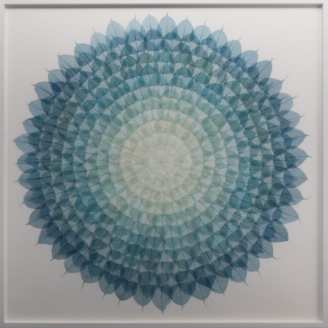 Teal Cerulean Mandala, 2018, dyed Bodhi (ficus religiosa) skeleton leaves, monofilament, archival ragboard, 61.5 x 61.5 inches/156.2 x 156.2 cm