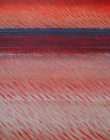 "Joan Vennum, Verge, 2004, Oil on canvas, 60 x 48"""