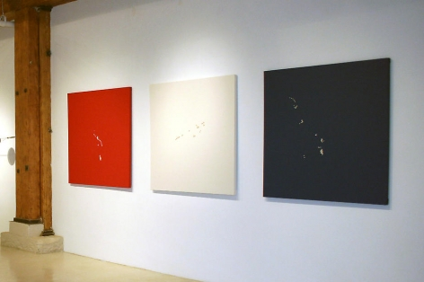 Michael Petry, The All Americans: Red, White, and Blue (Web Portrait Series), 2006-2007, Leather and fresh water pearls, 48 x 48 each