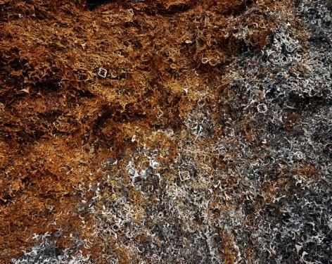 , Edward Burtynsky, Pivot Irrigation #27, High Plains, Texas Panhandle, USA, 2012, Chromogenic color print, 36 x 68 inches/91.4 x 172.7 cm; © 2012 Edward Burtynsky