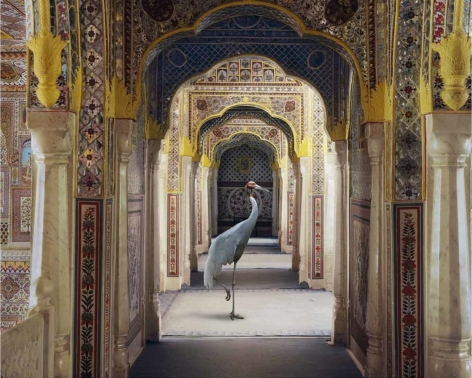 The Holding of Vigilance, Samode Palace, 2010, Hahnemühle ink jet print, 48 x 60 inches/122 x 152 cm