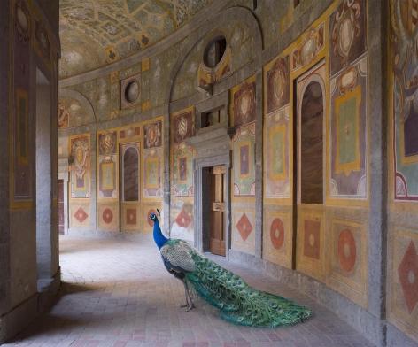 Heaven's Vault, Villa Farnese, Caprarola, 2014, Hahnemühle ink jet print, 31.5 x 39.4 inches/80 x 100 cm