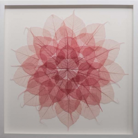 Red Leaf Meditation Mandala, 2015, dyed bodhi ficus religiosa skeleton leaves monofilament, 21 x 21 inches/53.3 x 53.3 cm