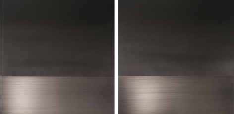 , Black Fuyu Winter diptych, 2014, urethane and pigment on aluminum, 36 x 72 inches/91.5 x 183 cm