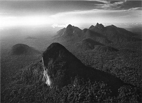 Amazon Forest, State of Amazonas, Brazil © Sebastião Salgado/Amazonas Images, 2009