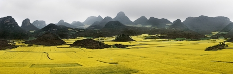 Canola Fields #2, Luoping, Yunnan Province, China,2011, chromogenic color print, 30.8 x 96 inches/78.2 x 243.8 cm, edition of 12