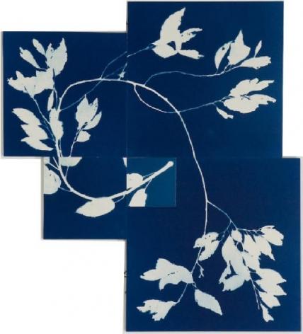 Susan Weil, Spiral Blue, 2007, Blueprint on paper,