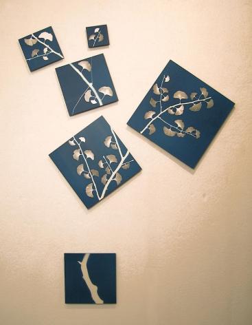 "Blue Sky Silver Gingko, 2007 Blueprint 73.5 x 58.5"""