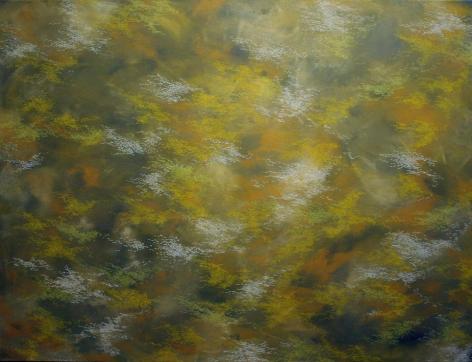 "Hosook Kang,  Tickles , 2008, Acrylic on canvas, 48 x 63"""