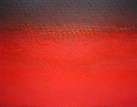 "Joan Vennum, From the Western Region, 2006, Oil on canvas, 48 x 60"""