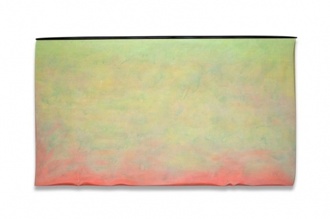Robert Yasuda, Origins, 2013, acrylic on fabric on wood, 36 x 64 inches / 91 x 162.6 cm