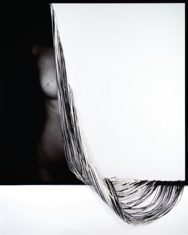 Loss, 2015, C-type print and hand-cut canvas, 43.7 x 42.5 inches/111 x 108 cm