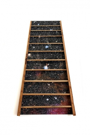 Barton's Ladder, 2012, inkjet & wood on canvas, 60 x 37 x 3.5 inches
