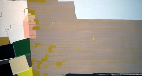 Frances Barth Skelter	2006	Acrylic on canvas	52 x 96""