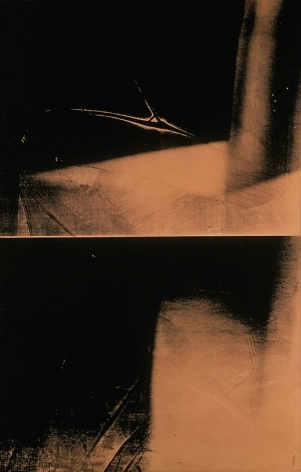 Shadow, 1978 Synthetic polymer paint and silkscreen ink on canvas