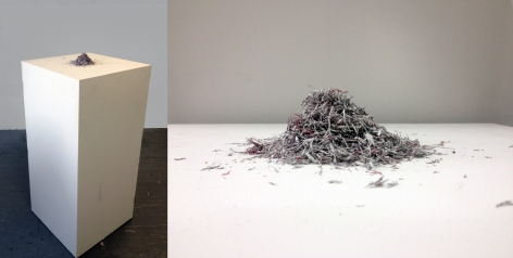 Bethany Collins, Skin, 1965, 2014